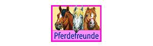 Kinderteppiche von Pferdefreunde